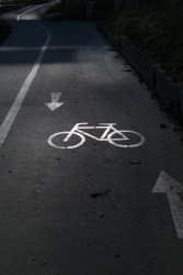 cycle-path-228125_1280