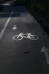 cycle-path-228125_1280