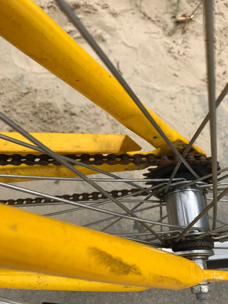 bikingtom,Virginia Beach,USA,Radfahren