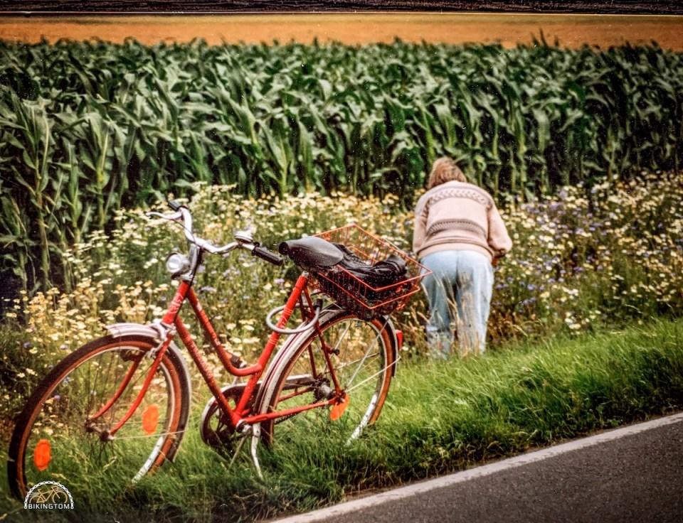 Radfahren,Papa,Vater,Mutter