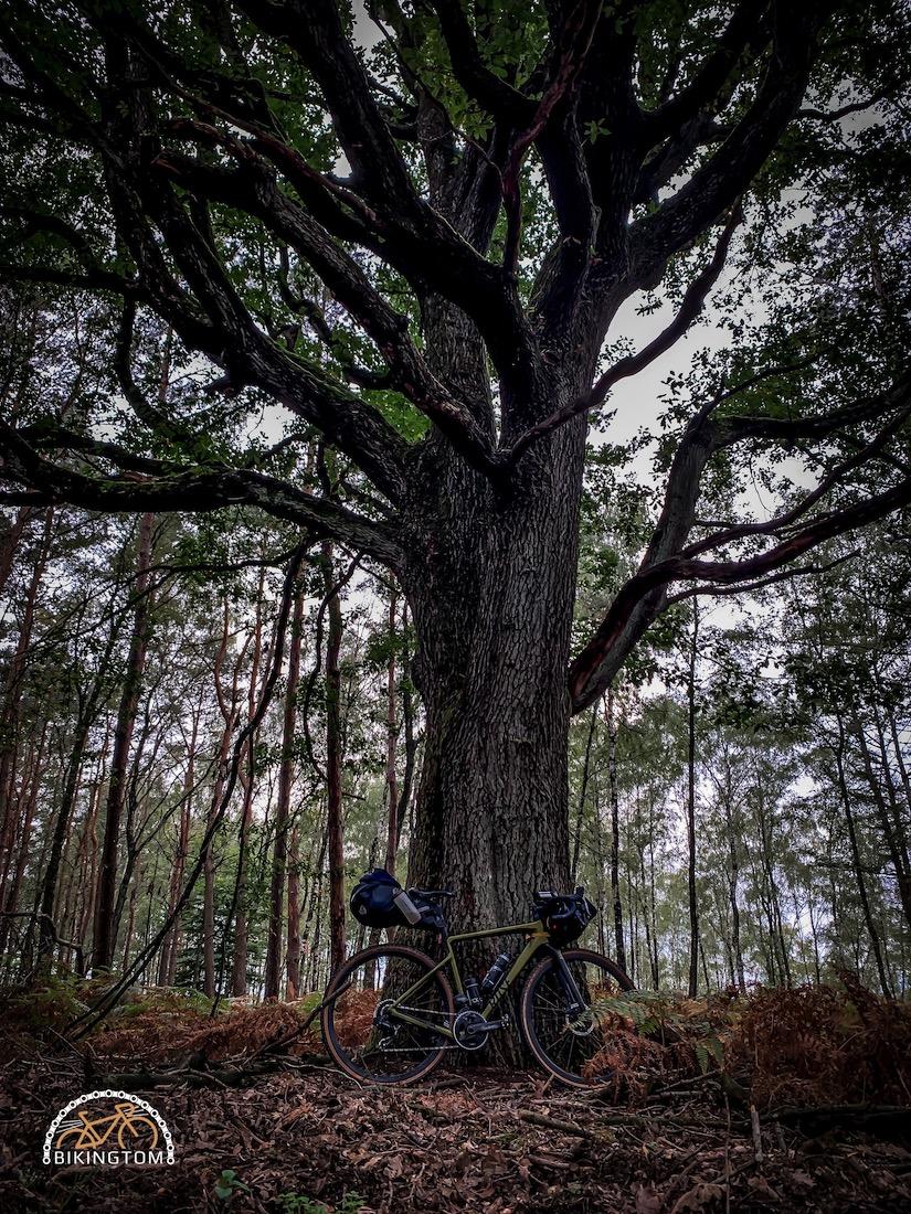 Overnighter,bikingtom