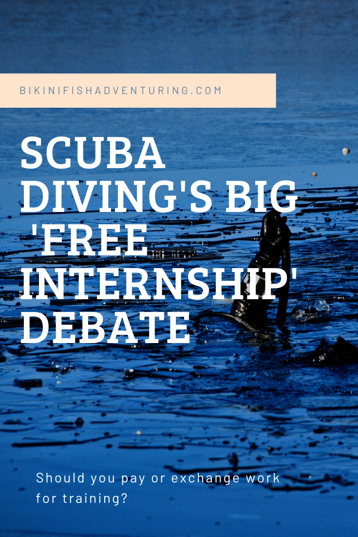 Scuba diving's Big 'Free Internship' debate