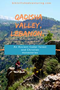Qadisha valley, Lebanon. An Ancient Cedar forest and Christian monasteries.