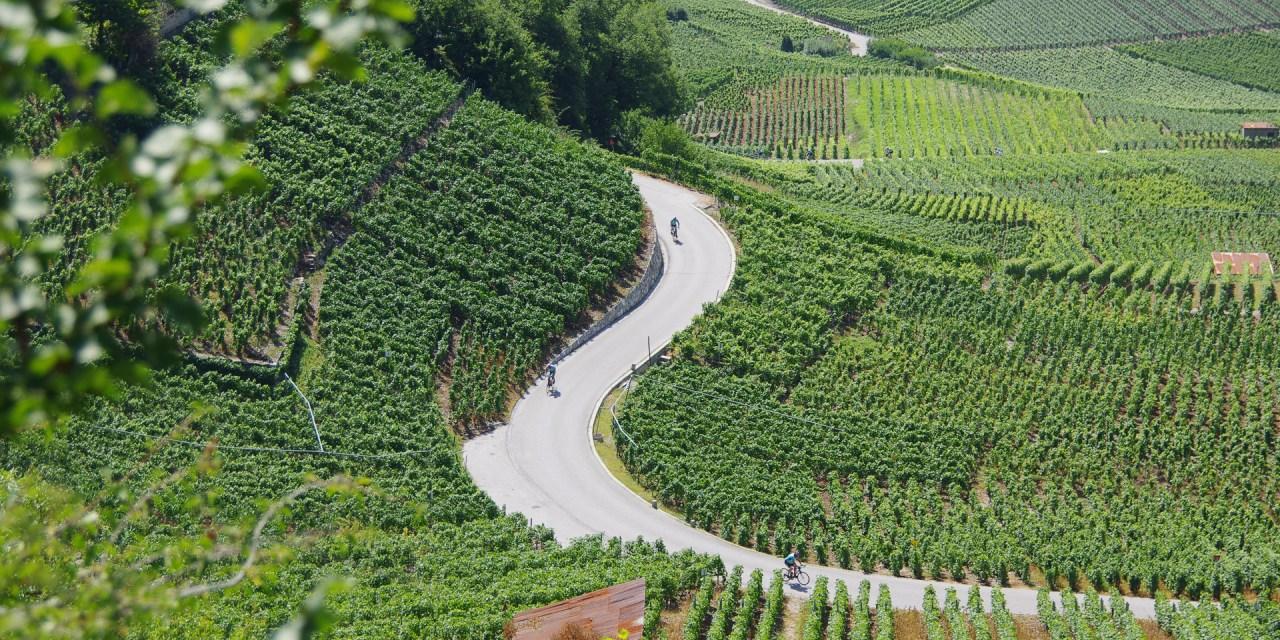Prologues des vins du Valais