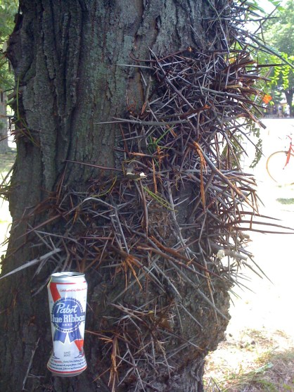 PBR on scary tree