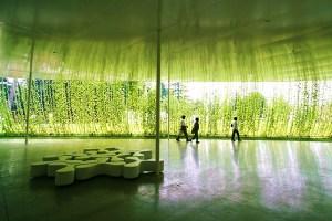 妹島金沢21世紀美術館