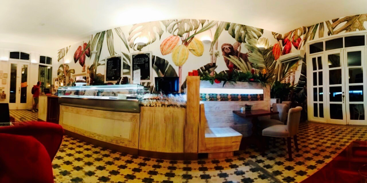 Speaking with the Tropical Chocolate Café in Panama City
