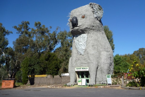The Giant Koala, Stawell VIC