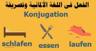 الفعل-فى-اللغة-الألمانية-وتصريفة
