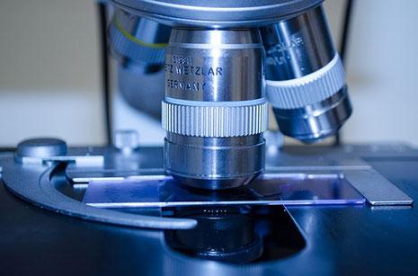 Educación destina 16 millones para grupos de investigación