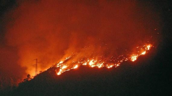 El incendio forestal de Berango comienza a encontrarse en fase de control tras las labores de extinción