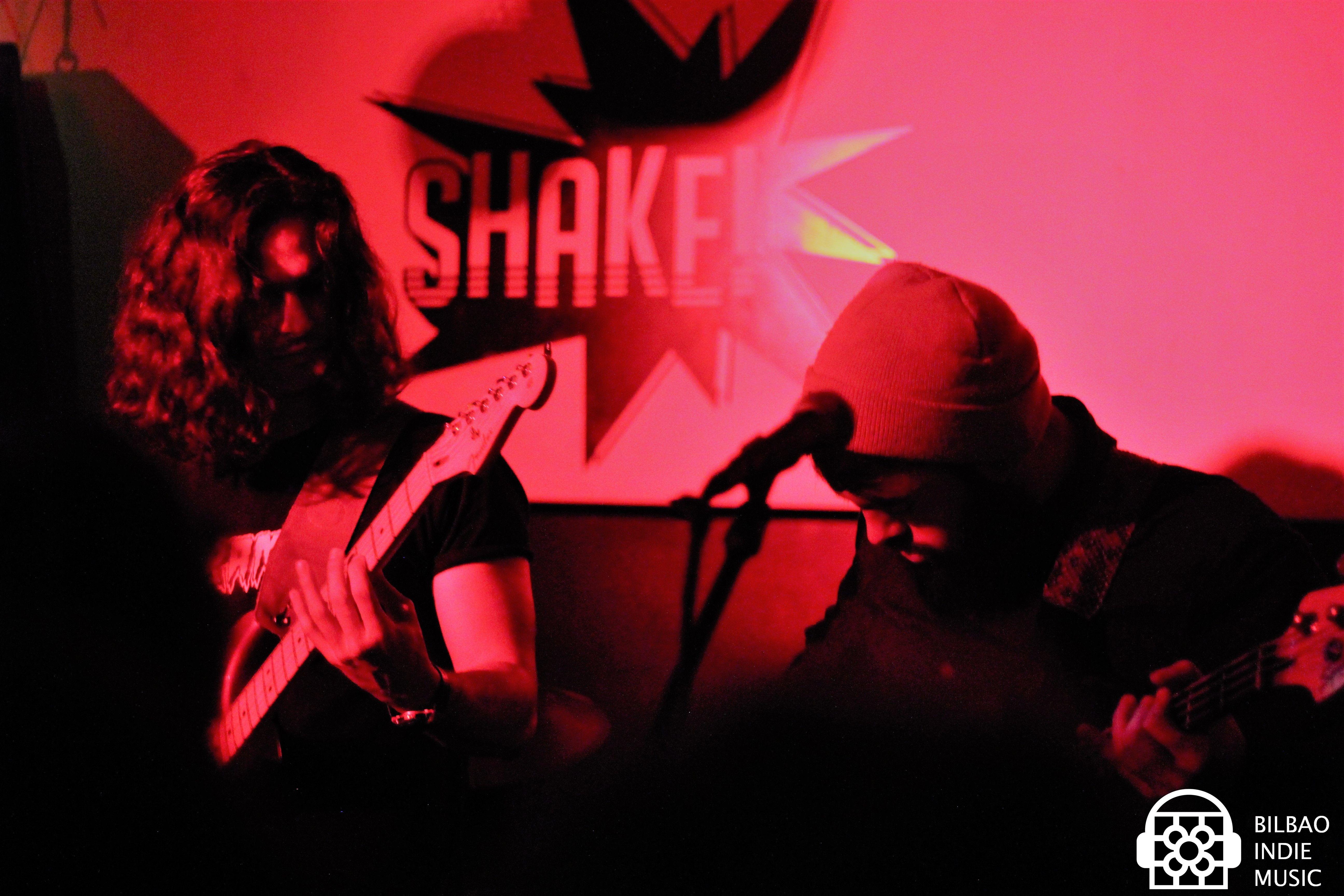 lasselvas_18012018_shake
