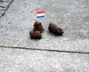 Dank der Imagekampagne wird es wohl bald keine Hundehaufen mehr in der Neustadt geben.