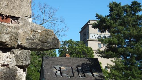 Kletterfelsen oder Nasenmann? Hinterm Verkehrbstriebe-Hochhaus.