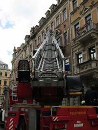 Feuerwehrleute versuchen die Bienen umzusiedeln