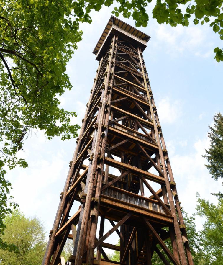 So sah der Goetheturm vor dem Brand aus. Erst 2014 war er saniert worden.