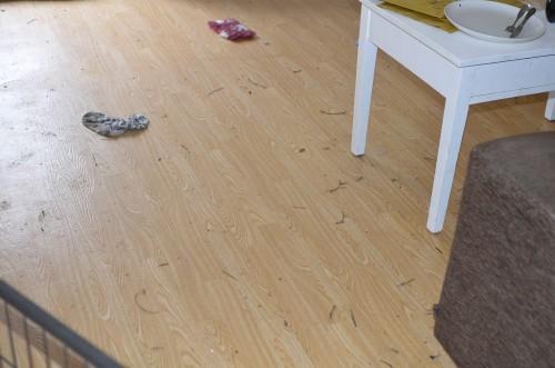 Såhär ser golven ut efter Älta har gått ett spår ;)