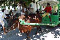 Transportmittel Ochsenkarre