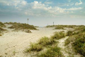 Dünen und Meer