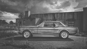 Mustang an der alten Halle in schwarz/weiss