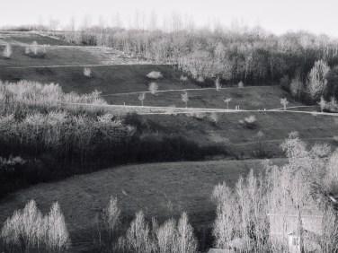 halde-rungenberg-9