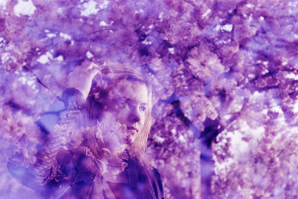 Porträt mit Kirschblüten