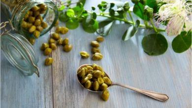 Kapari bitkisi faydaları
