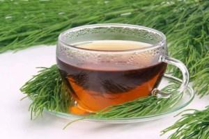 Kırkkilit Otu Çayı Nasıl Yapılır?