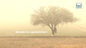 Türklerde Şamanizm