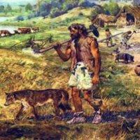Tarım Yapmaya Başlamak Sindirimimizi, Boyumuzu ve Ten Rengimizi Değiştirdi