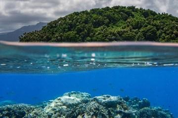 Manta Road Pohnpei