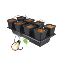 Atami Wilma Wide 8 Pot System