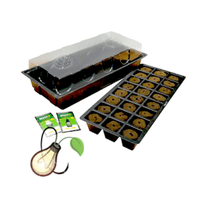 ROOT!T WINDOWSILL PROPAGATION KIT