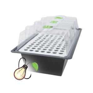 Hydro Propagator | X-stream PT400 for Plants | Bill & Ben's