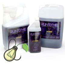 Intense Runzyme