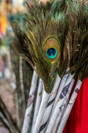 peacock-feathers-market-little-india-singapore