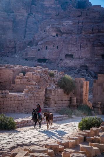 horses-sun-shadows-petra-jordan