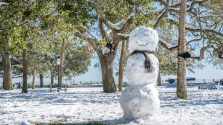 white-point-park-snowman-charleston