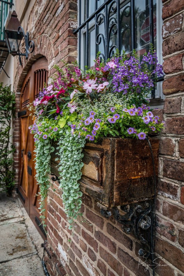 window-box-door-flowers-lantern