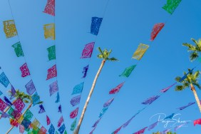 baja-mexico-party-flags