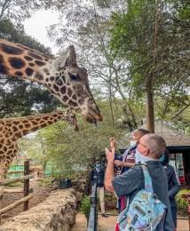 bill-boy-feeding-giraffe