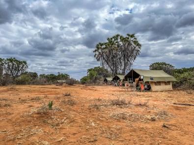 camp-mzima-tsavo-west