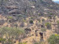 great-walk-africa-day-2-3-4-02