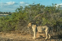 great-walk-africa-day-8-21