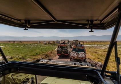 ngorongoro-crater-paige-shaw-September 19, 2021-19