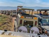 ngorongoro-crater-paige-shaw-September 19, 2021-20