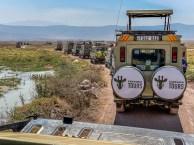 ngorongoro-crater-paige-shaw-September 19, 2021-21