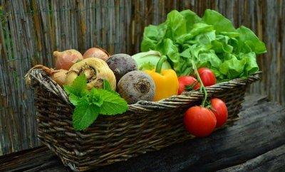 Lasting Healthy Living