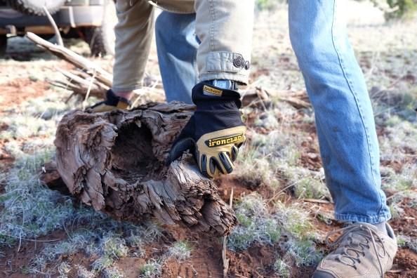 Ranchworx with log