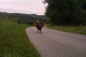 dm-2012-landevej-kridtbakken